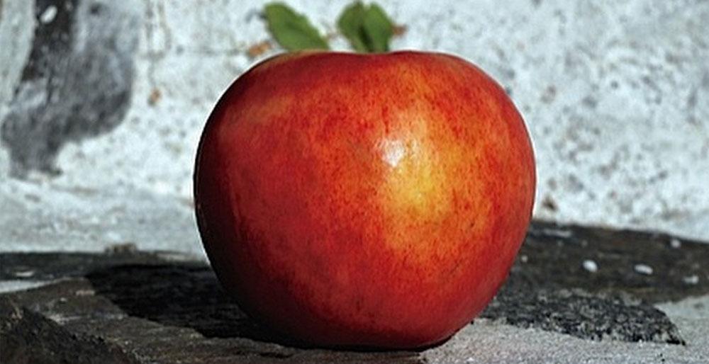 Ias snabba äppelpaj – Landet bakar